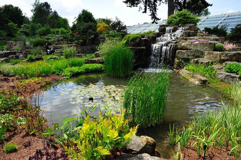 Ogrody wodne, Kew Gardens